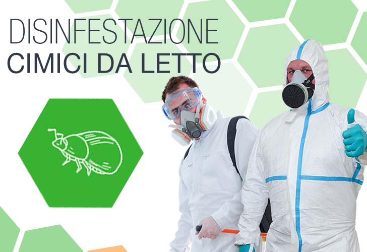 Disinfestazione Cimici Dei Letti Viale Isonzo Milano